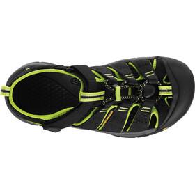Keen Newport H2 Sandals Barn black/lime green